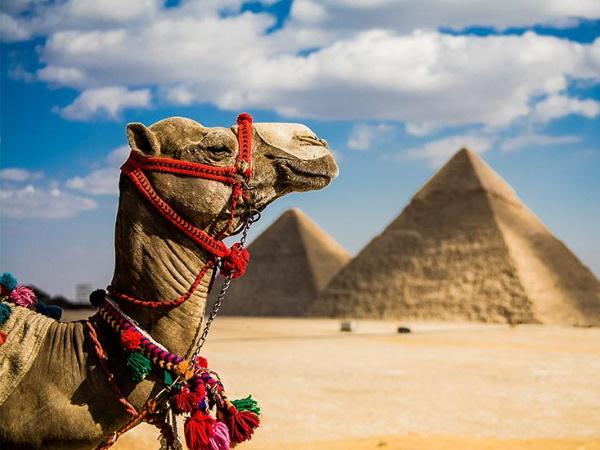 Letovanje Egipat 2021